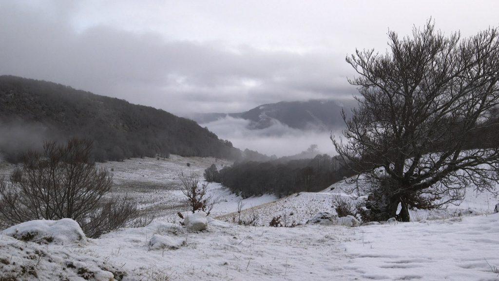 La valle della Cicerana